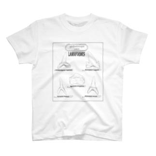 サメの歯Tシャツ! T-shirts