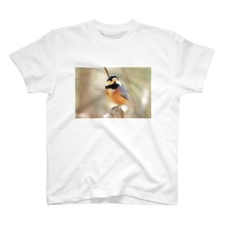 ヤマガラ2 T-shirts