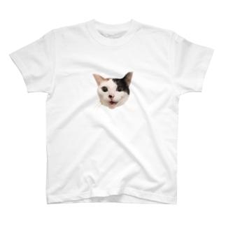 もふりたいこの笑顔 T-Shirt