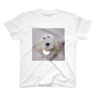 犬さん T-shirts
