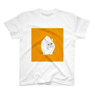 ボブキャット イラスト グッズ  野生猫 ネコ科 猫科 野生動物 イラスト T-shirts