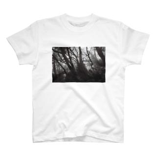 屋久島の森 T-shirts