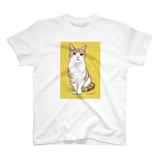 アメショのボワちゃん T-shirts