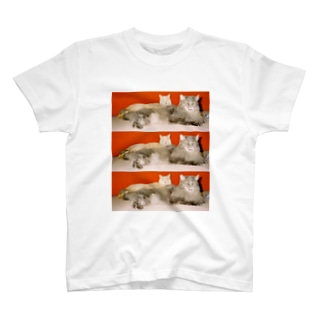 mycats T-shirts