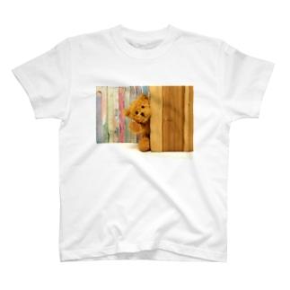 テディベア T-shirts
