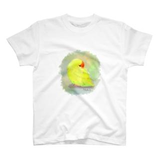 キガシラアオハシインコ T-shirts