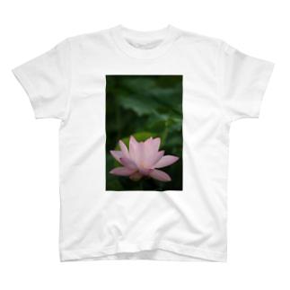 蓮~平安 T-shirts