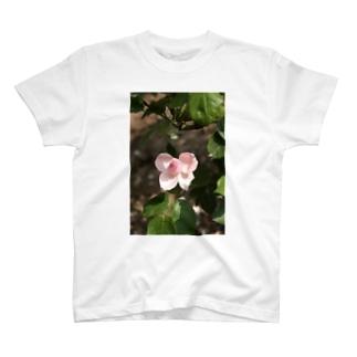 薔薇~リボン T-shirts