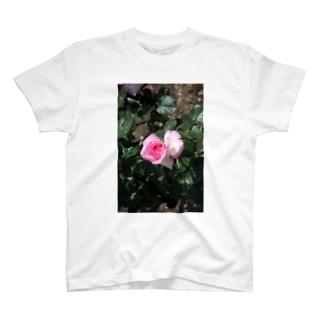 薔薇~ピンクハート T-shirts
