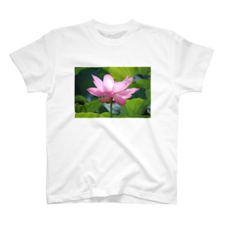 蓮一輪 T-shirts