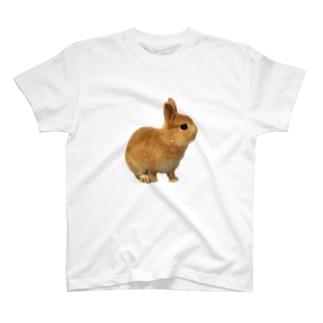 スマイリーニコ T-shirts