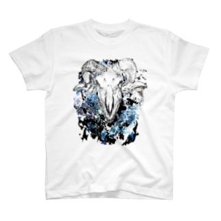 compensation T-shirts