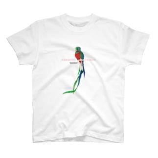 ケツァール、会ってみたいです T-shirts