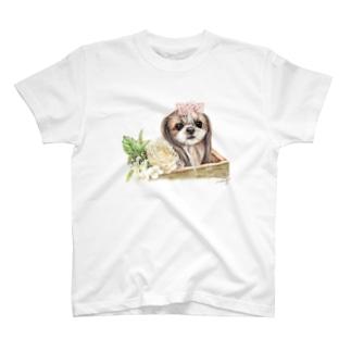 シーズー59 T-Shirt