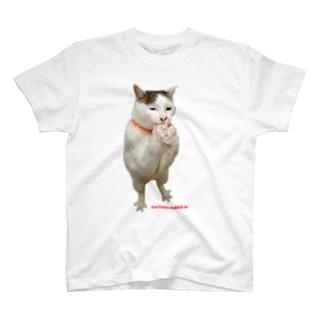 トリ足ヨウカンさん T-Shirt