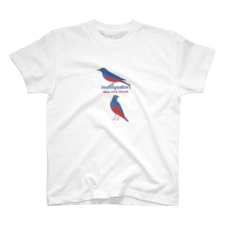 イソヒヨドリさん、もっと会いたい T-shirts