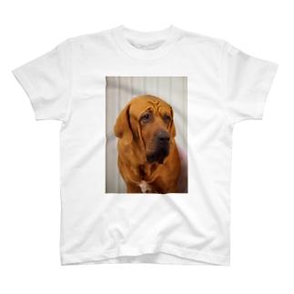 うるうる犬 T-shirts