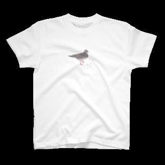 ヤマノナガメのハトと豆 Tシャツ