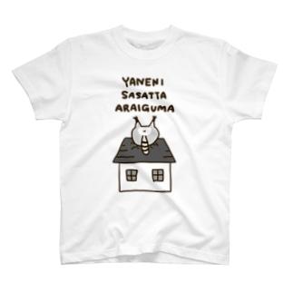 アライグマD。 T-shirts