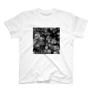 薔薇🌹 モノトーン T-shirts
