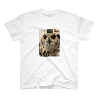 ハウルトートバッグ T-shirts