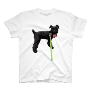 散歩DOG T-shirts