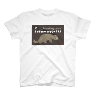 ネコT(イリオモテヤマネコ) T-shirts