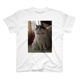 くーたんおリボンでキリリっ T-shirts