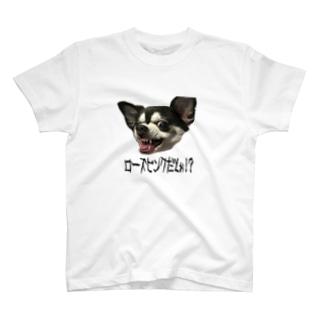 私怒ってます… T-shirts