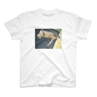 イにゃバウアーミンタ T-shirts