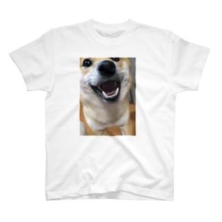 こむぎアップ T-shirts