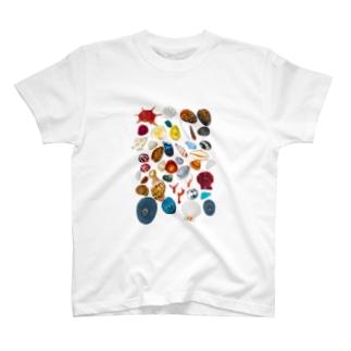 カラフルポップシェルズ T-shirts