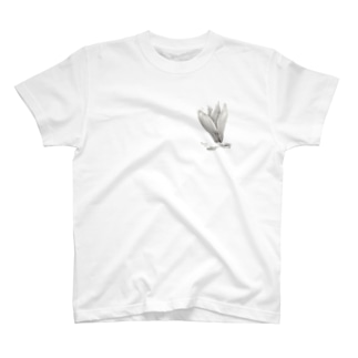 Magnolia T-shirts