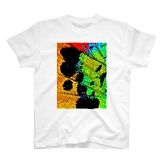錦 T-shirts