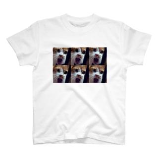 オチョリコペリコ!!! T-shirts