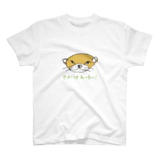 かわうそおったー! T-shirts