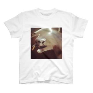 アルパチーノ T-shirts