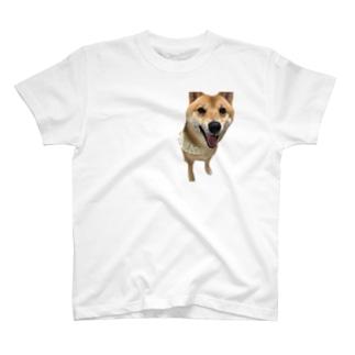 てんきち T-shirts