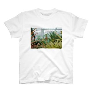 瑞風 T-shirts