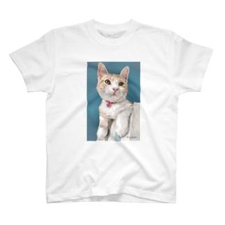 アメリカンショートヘアのボワちゃん猫絵 T-shirts