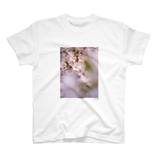 SAKURA 2 T-shirts
