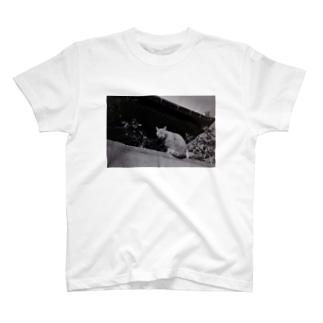 ニャンです? T-shirts