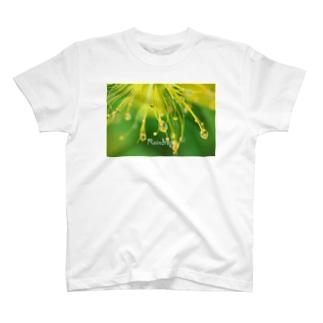 ビョウヤナギ T-shirts