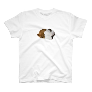 しきある T-shirts