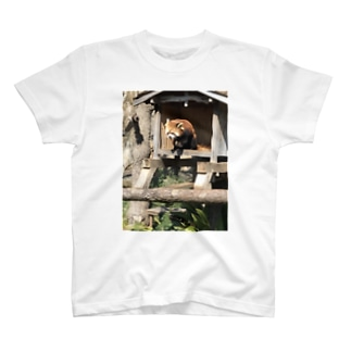レッサー大好きTシャツ T-shirts