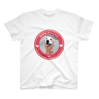 ゴールデンレトリバー モモ T-shirts