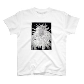 6/13 T-shirts