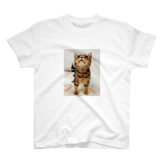 見上げおじゃ T-shirts