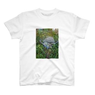 極楽がえる-とぅるとぅるver. T-shirts
