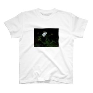 綿毛の夜 T-shirts